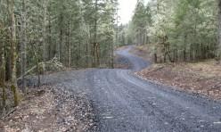 New Road Development